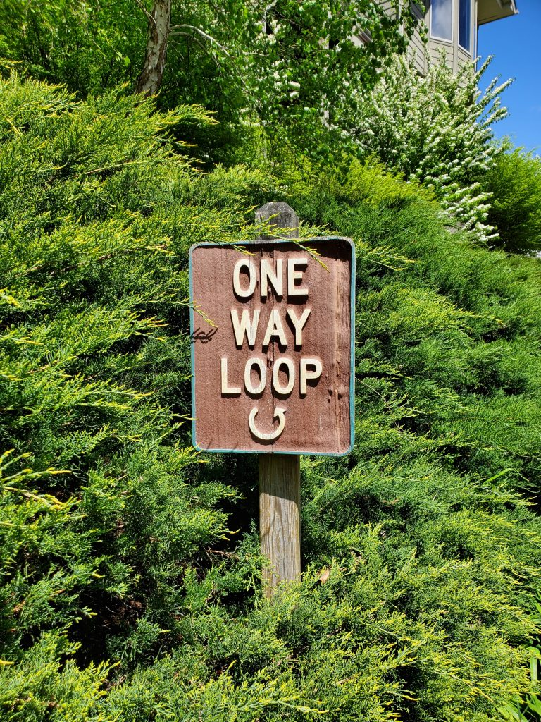 One way loop road sign