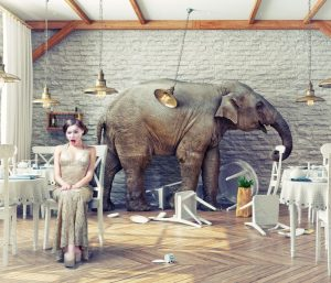 Women unattentive to the elephant in the room